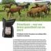 leaflet paarden NL