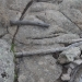 anton sinke-sardinië-2928